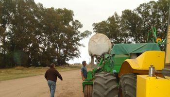 En el último año se crearon más de 7300 empleos en el sector agropecuario