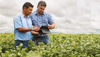 Cuáles son las startups para el agro que rompen los moldes