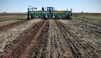 Empresas del agro apuestan a mejorar la competitividad