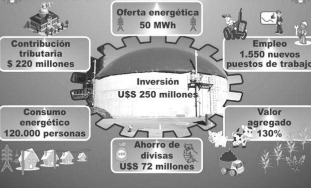 Aportes y Contribuciones de la Generación de Energía Eléctrica a partir de Biomasa Agropecuaria. (suponiendo 50 plantas de 1MWh)