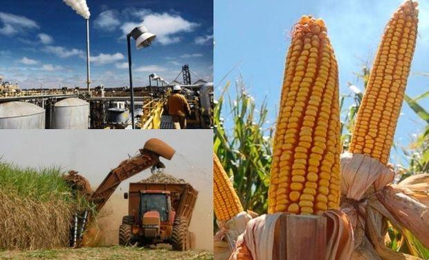 Aumenta la participación del Campo y la agroindustria en la producción de energía de nuestro país.