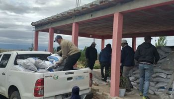 Tras los incendios en Córdoba, la hacienda quedó sin pasturas y reciben asistencia