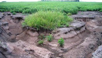 En Argentina, se pierden 30 millones de dólares al año por erosión hídrica