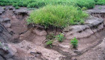 Más de 100 millones de hectáreas son afectadas por la erosión en Argentina
