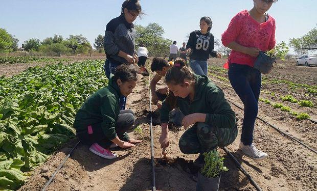 A través de EscuelAgro el Estado establece un compromiso con la educación agraria.