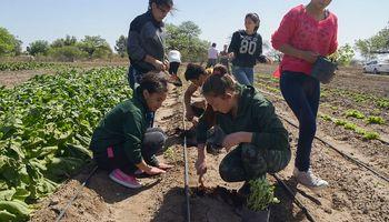 10 planteos para mejorar la Educación Agropecuaria en Argentina
