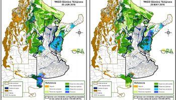 Siembra de trigo: reservas hídricas adecuadas