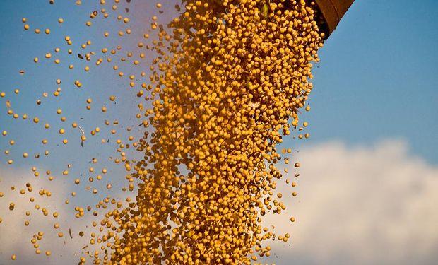 EE.UU. buscará soja en Argentina