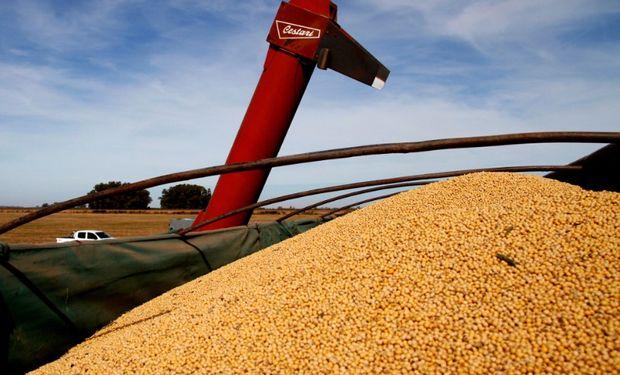 El Gobierno extiende por un mes la posibilidad de solicitar pagos por Estímulo Agrícola Plan Belgrano.