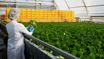 AgriFoodTech en Argentina: las 42 startups que establecen las bases del hub latinoamericano del sector