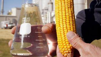 El proyecto K para los biocombustibles pone en alerta al sector