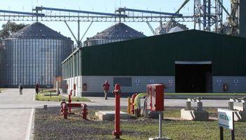 Piden modificar el precio del etanol
