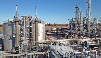 Sigue vigente la intervención oficial del mercado interno del etanol