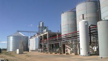 Se publicaron los nuevos precios de bioetanol a base de maíz y de caña de azúcar