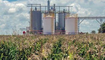 Un campo de Córdoba instala la primera planta de biocombustible para autoconsumo bajo el programa BIOCBA