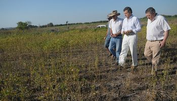 Entre Ríos obtuvo la declaración de emergencia agropecuaria nacional