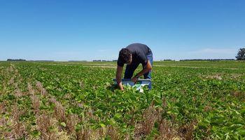 La cuarentena en el campo: comparten imágenes desde distintos puntos del país