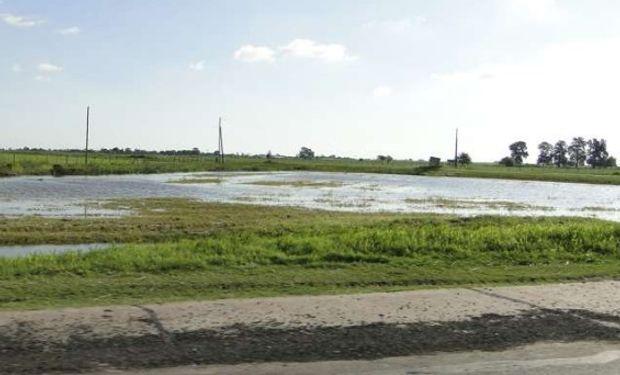 Los excesos hídricos complican.