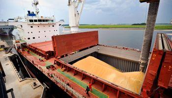Exportaciones de soja cayeron 11% en octubre
