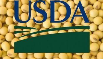 ¿Cuáles son las expectativas de cara al informe del USDA?