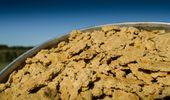 Científicos buscan mejorar la calidad del expeller de soja para sumarlo a la dieta de los argentinos