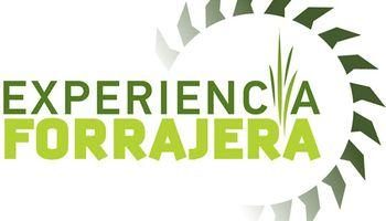 Forratec y CLAAS realizaron nuevas ediciones de Experiencia forrajera