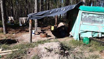 Corrientes: detectaron 176 trabajadores forestales con indicios de explotación