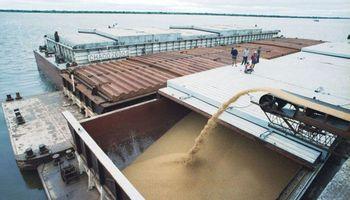 Argentina sigue creciendo como abastecedor de trigo a Brasil