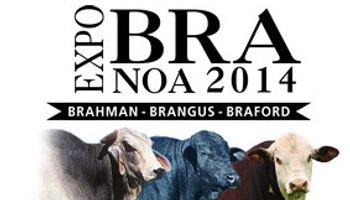Hoy comienza la 8va edición de ExpoBRA