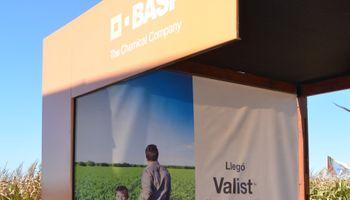 BASF lanzó Valist, un herbicida para maíces Clearfield en Expoagro 2014