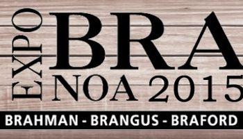 En Santiago del Estero, mañana comienza ExpoBRA 2015
