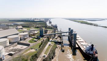 Con aporte clave del complejo soja y el maíz, las exportaciones de Argentina son las mayores desde 2013