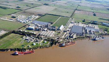 Cargill, ACA y ADM suspenden cupos por el paro de recibidores de granos