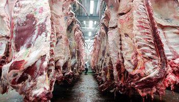 No repunta la exportación de carne en 2015