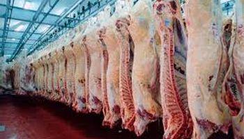 Carne: Exportaciones en el mínimo en 40 años