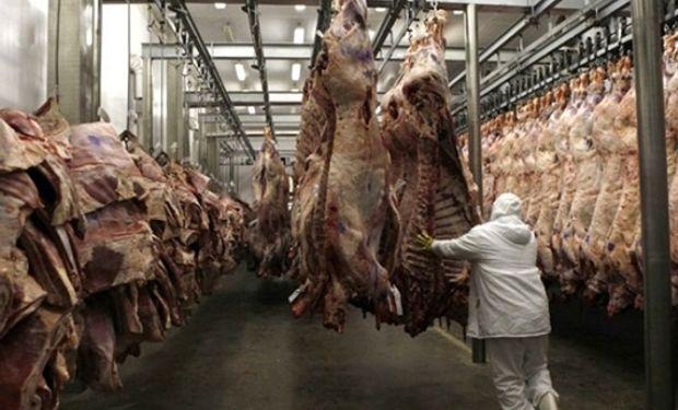 Se dejó de exportar carne por u$s 6000 M