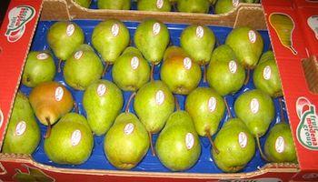 Aunque resta definir cuándo, se vuelve a exportar frutas a Brasil