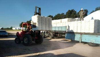 Partieron con destino a Turquía 250 toneladas de fibra de algodón chaqueña