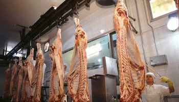 Senasa investiga un antibiótico prohibido en carne bovina exportada a China