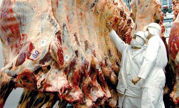 Durante el 2016 las exportaciones de carnes bovinas totalizaron 237 mil toneladas peso res, un 19% más que en 2015.