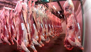 Las exportaciones de carne venían creciendo hasta la aparición del COVID-19