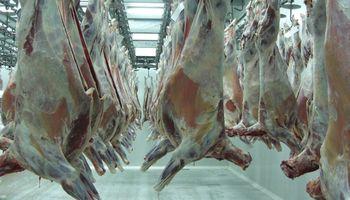 Exportación de carne bovina cae en Argentina