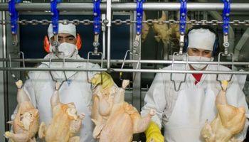 México habilitó 11 nuevos frigorificos argentinos para exportar carne aviar