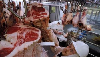 En 2015 Uruguay exportó el doble de carne bovina que la Argentina