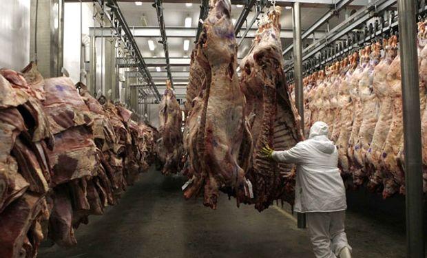 Para producir un kilo de carne vacuna se necesitan 7 kilos de alimentos y 30 meses desde el nacimiento del animal hasta la faena.