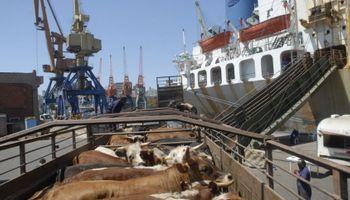 Uruguay: exportación de ganado en pie en suspenso por crisis en Brasil