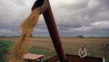 Se exportaron 10 millones de toneladas de granos más
