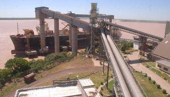 Apertura de exportación de granos no impactará en los precios
