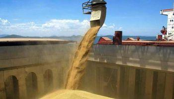 Ucrania exportó 31.393 M de tn de granos