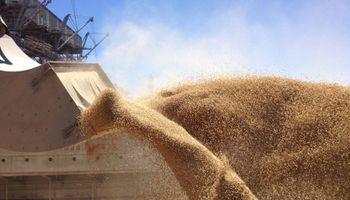 Por la exportación de granos entraron ya u$s 10.673 millones